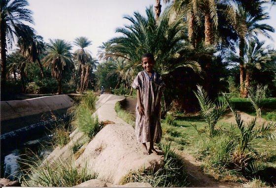 Rural child of Kom Ombo