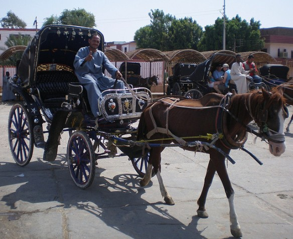 The hose carriage to Edfu Temple.