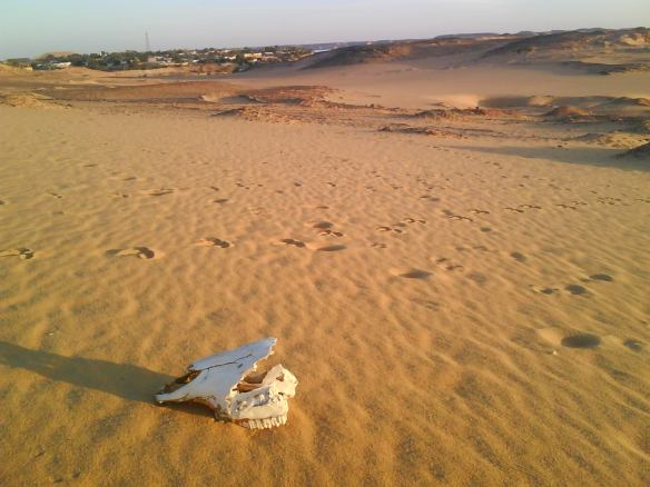 Abu Simbel Village Nubian Desert