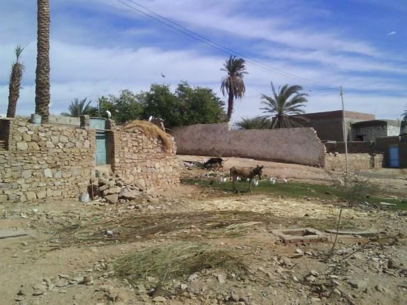 Small village Abu Simbel