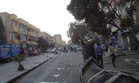 Going to Edfu Temple on a horse carriage.