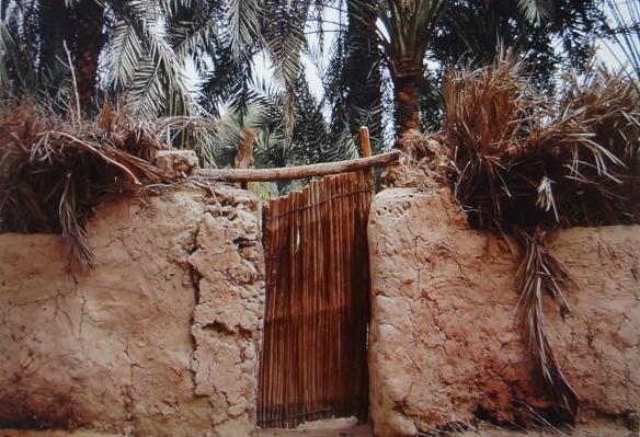Garden of wealthy family, El-Farafra
