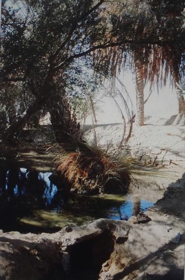 Fountain of Farafra