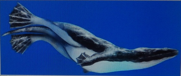 The ancient whale had forefeet and a hind legs like this.
