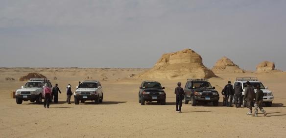Our Fleet, All Toyota Land Cruiser