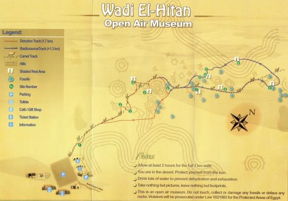 Wadi Al-Hitan Open Air Museum Map