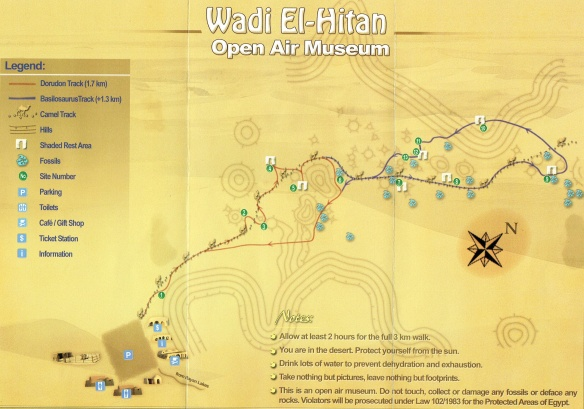 Wadi Al-Hitan Open Air Museum Map