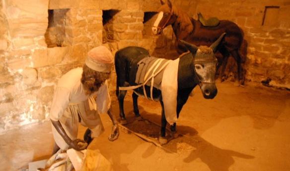 The cell inside, traveler and donkeys.