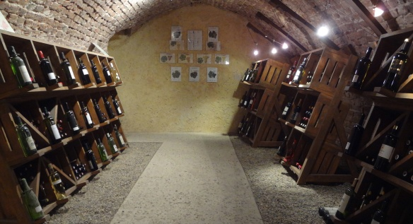 Wine cellar in the museum
