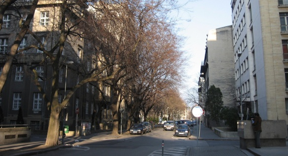 Dobrovičová Street