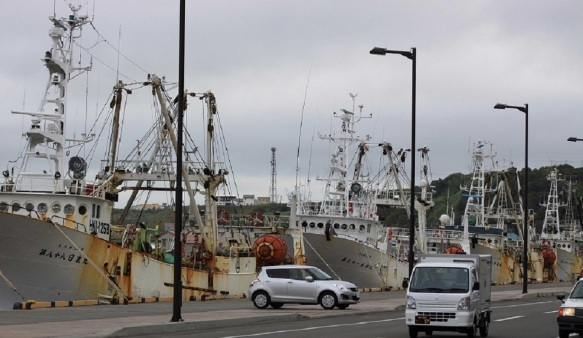 Busy fishing port of Wakkanai.