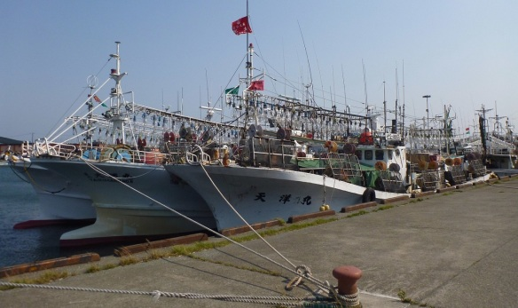 Squid fishing boats in the fishing port of Wakkanai.