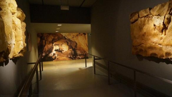 Exhibition Room of the Altamira Cave Museum