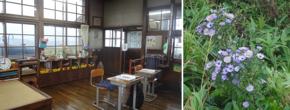 Classroom of the old school and flowers found in the schoolyard.