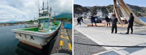 Fishing boat and working fishermen, Mototomari fishing port.