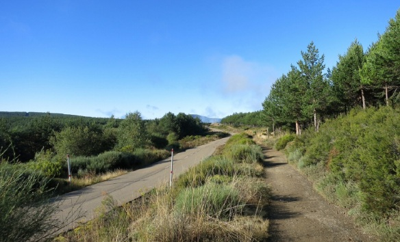 Camino de Santiago, near the village of Riego de Ambros