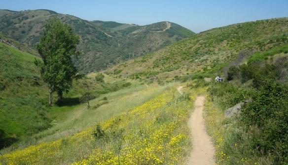 Camino de Santiago, walking to the town of Molinaseca from Riego de Ambrós.