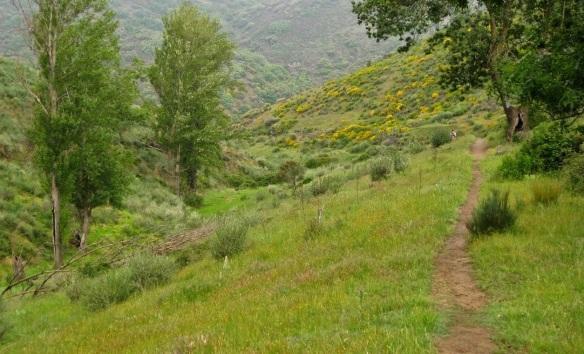 Camino de Santiago, walking from Riego de Ambrós.