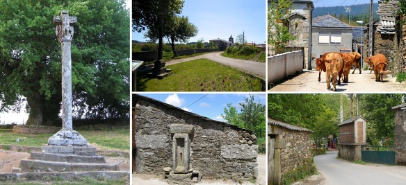 The cruceiro (Galician stone cross) dates back to 1670. Passing in front of the cruceiro enter the Ligonde village. Surprised, suddenly cattle appeared. Fountain for pilgrims.