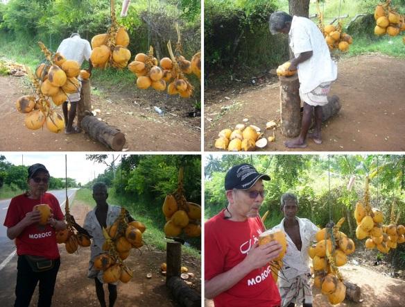 rord side coconut vendor