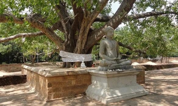 Sakyamuni image in front of Abhayagiriya Stupa