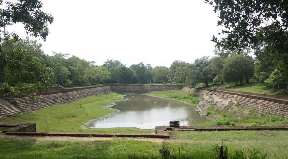 Elephant Pond