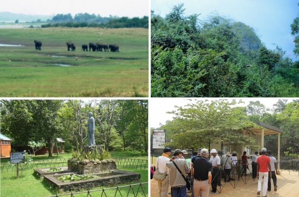 Going into the village of Sigiriya; Distant view of wild elephants, Distant view of Sigiriya Rock from inside the car, Image of the researcher Professor Senarathparana Vithana (1896-1972) and Ticket office.
