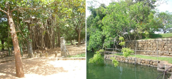 The entrance of the ruins. Passing in front of the banyan tree, the water gerden come into view.