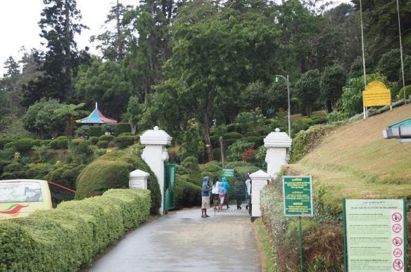 Hakgala Botanical Garden Nuwara Eliya.