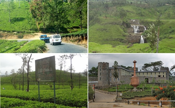 Kept driving to the west, St. Clair waterfalls, Mlesna tea plantation, Mlesna Tea Castel.