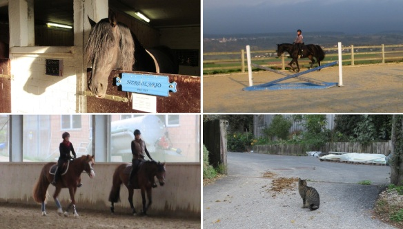 Horse riding school, Domaine du Rosselet