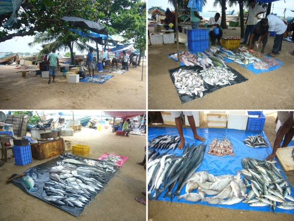 A roadside small fish market of the coast.