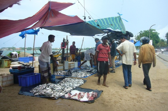 Nearby fish market of the Galle fortress.