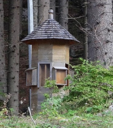 Apartment house for birds