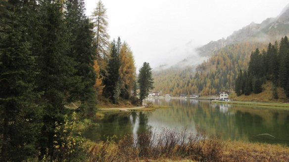 Autumn leaves on the Lake Misurina.