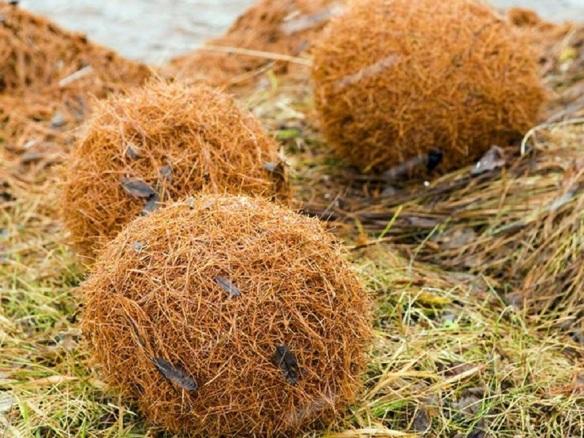 """Silserkugeln"" (Sils balls), the phot from Hotel Castell Engadin St. Moritz."