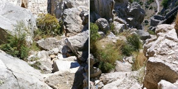 The mountain path