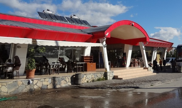Arrived in the town of Sapanca and entered a roadside restaurant.