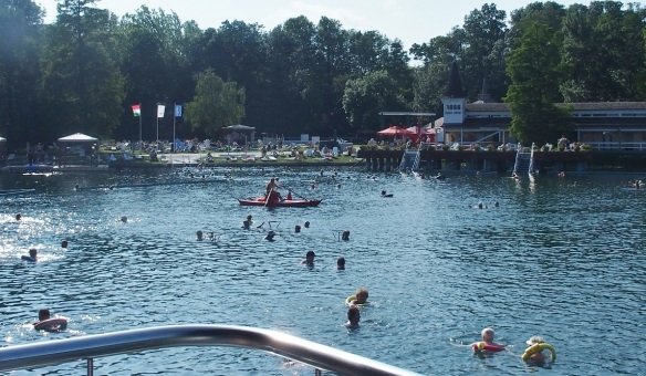 People are enjoying in the big swimming pond.