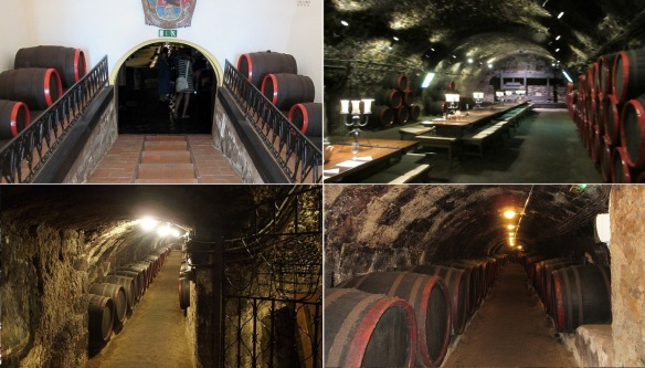 The wine cellar was built in the 15th century: The entrance to the wine cellar. Tasting room. Going down into the deeper cave. 28 meters length storage cavern.