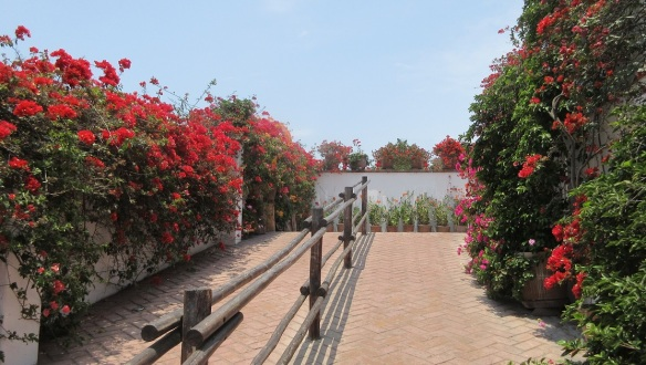 The museum garden is full of colorful flowers.